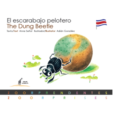 El escarabajo pelotero / The Dung Beetle