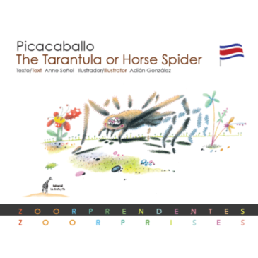 Picacaballo / The Tarantula or Horse Spider